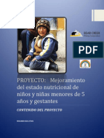 RESUMEN EJECUTIVO PRIMER AVANCE.pdf