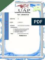 TRABAJO CAMINOS (2).docx