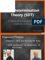 Self Determinationtheory 140824233422 Phpapp02