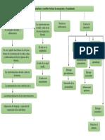 Unidad 1- Mapa Conceptual Psicologia Evolutiva