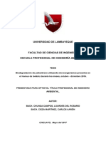 CHUNGA CAMPOS, LOURDES DEL ROSARIO ok.pdf