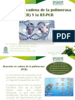 PCR EXPOSICION ALL RIGHTS RESERVED