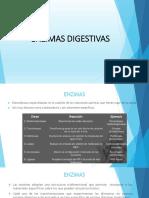 expo bioqui enzimas digestivas.pdf