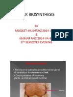Milk Biosynthesis