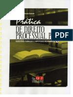 dpp_processo_penal_praticas_2010_paula_andrade.pdf