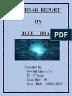 docdownloader.com_blue-brain-seminar-report.docx