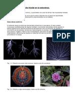 Fractal Es PDF