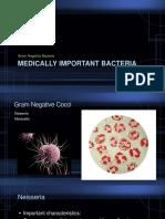Medically Important Bacteria Gram Negative.pptx Filename UTF-8 Medically.