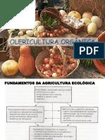 Olericultura orgânica