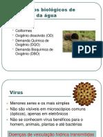 Água - Parâmetros Biológicos