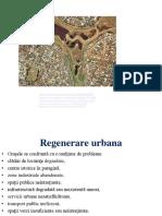 Regenerare urbana1
