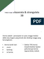 Hemoroid Grade