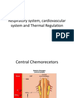 Cardiorespiratory system, Cardiovascular System and Thermal Regulation