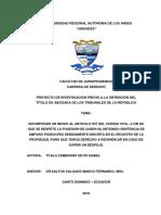 Amparo Posesorio Tesis 2018.pdf