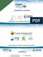 RESULTADOS_FASE_DIAGNOSTICO_RIO_COCORNA_DMM.pdf