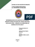 BIzahusv.pdf
