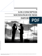 ,os conceptos sociológicos más importantes