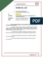 TIPOS-DE-CONTAMINACION-EN-MOQUEGUA-vladii.docx