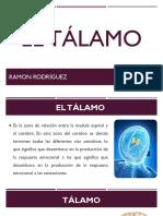 EL Tálamo