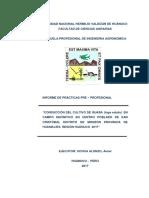 PPP AMIEL MONZON.docx