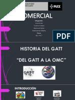 Historia Del Gatt
