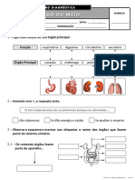 Ficha de Avaliação Diagnóstica - 4º ano EM II.pdf