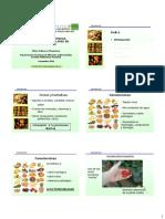 3. Alteraciones Fisiológicas, Bioquímicas y Moleculares. Silvia Valencia