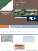 Sistemas de producción de ovinos y caprinos veterinaria II 2017.pdf