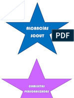 scout.docx
