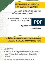 1º CLASE Enfermeria Cuidado AM Perfil Epidemiologico y Criterios Optimizacion Cuidado
