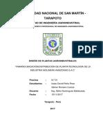 Primer Informe Amazonas SAC