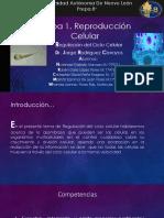 Fundamentos de Genetica y Biotecnologia