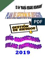 PLAN DE GESTION DE RIESGOS MARIA REICHE 2019.docx