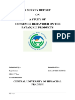 Patanjali Products Report