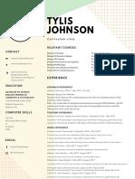 pastel green and yellow interior designer modern resume  1