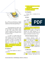 UNIDAD I-1-1.docx