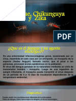 Dengue, Chicunguya y Sika