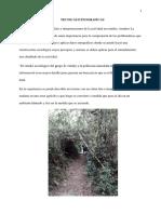 ANEXO 4(tecnicas etnograficas).docx