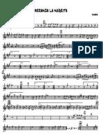 Parranda La Negrita Trompeta 1