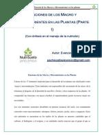 Función de Los Macros y Micronutrientes en Las Plantas (Parte I)