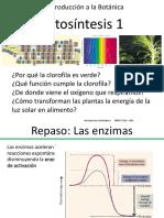 Teórico 8 Fotosíntesis I