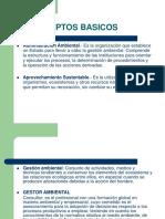 Introdccion y Defin Basicas (1)