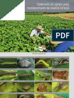 Caderneta de campo para monitoramento de insetos na soja
