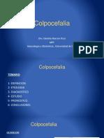 8da_fecundacion_embriogenesis