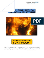 12b. Burns Injury (Russells Hall Hospital, UPDATED Mar 2012)