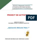 Proiect Albinuta 19.04.2019