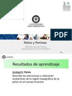 Clase 26 Pared de Pelvis y Perineo_DBIO1050.pdf