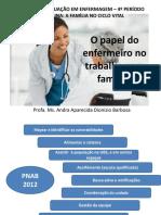 O Papel Do Enfermeiro No Trabalho Com Famílias