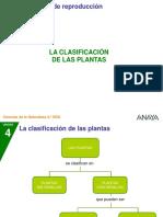 Las planta y su clasificacion II.ppt