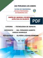 olivera lozano informe.docx